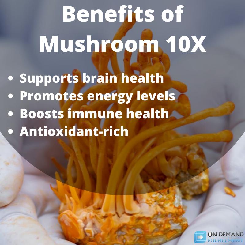 Benefits of Mushroom 10X